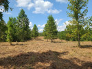 Photo of Lot 6  Lakewinds